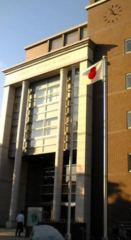 稲村亜美 大学